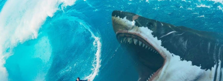Акулу гігантського розміру винесло на берег в США: лякаючі кадри