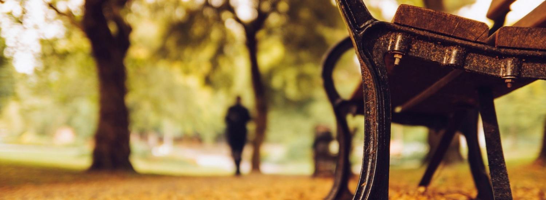 За межою стандартного: найнезвичайніші лавки з усього світу (ФОТО)
