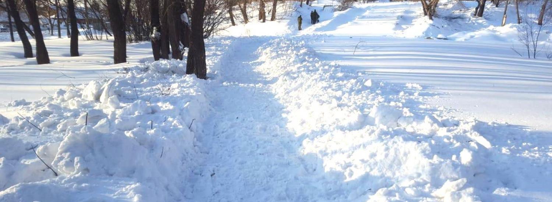 В Україні очікується похолодання та сніг: прогноз синоптиків