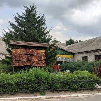 Керівник Сєверодонецького лісгоспу розповів чому горілий ліс не коштує як дрова