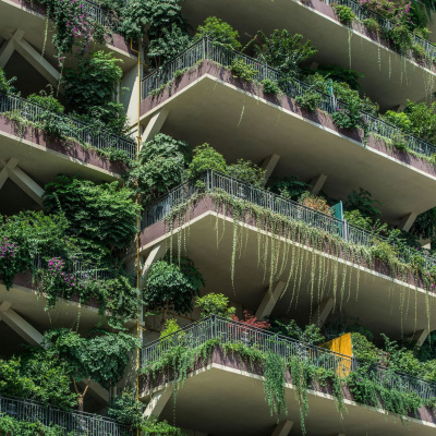Житловий комплекс, перетворений на екзотичний ліс, став справжнім кошмаром для мешканців