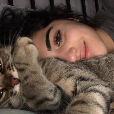 Кіт втішав господиню, яка плакала: зворушливе відео