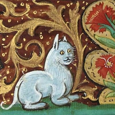 Жартівник потішається над середньовічними художниками, недосвідченими в зоології