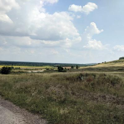Поліція Новопсковщини організувала цілодобове чергування на незаконно засіяних землях