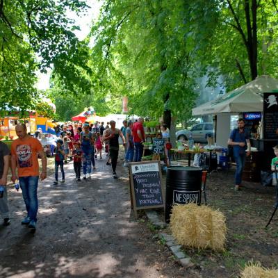 Козачий острів відкрив Фестиваль вуличної їжі