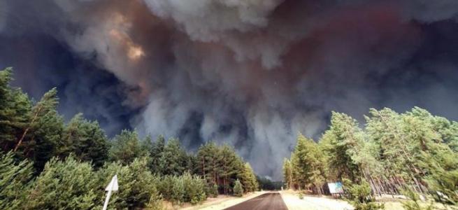 """Волонтер """"СХІД SOS"""" розповіла, як допомогти постраждалим від пожеж на Луганщині"""