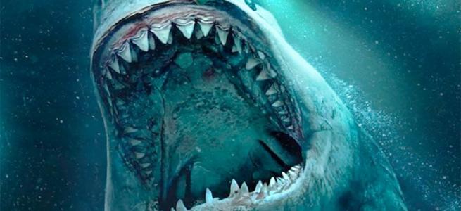 Американець відкопав рекордно великий зуб акули-мегалодону (ФОТО)