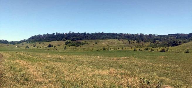 У Луганській області нецільове використання земель призводить до знищення річок та байбаків