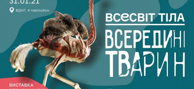 Побачити все зсередини: у Києві відкриють виставку «тварин без шкіри»