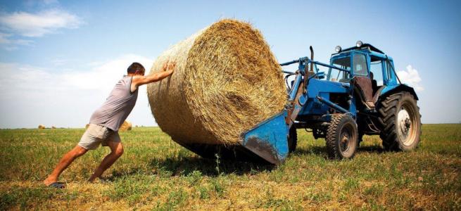 Сільгоспвиробники Луганщини та Донеччини можуть долучитися до грантової програми від міжнародних організацій