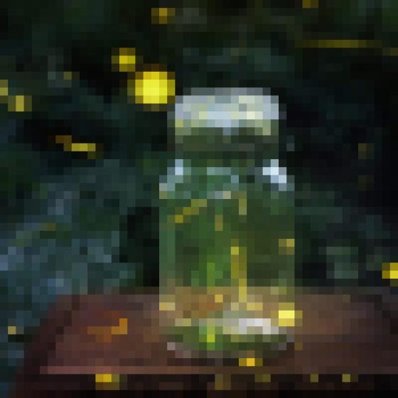 Чому світлячки світяться: детальний розгляд явища