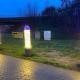 У Бельгії встановили святкову алею з чоловічих статевих органів